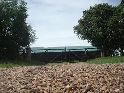 campo,escena rural,argentina,vista de frente,tranq