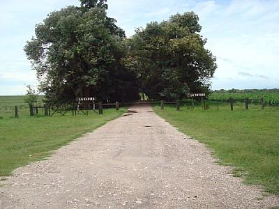 imágenes gratis camino,calle,campo,escena rural,aire libre,dia,ext