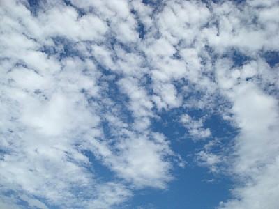 cielo,cielos,nadie,vista de abajo,nube,nubes,nubla