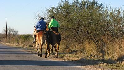 imagenes gratis prod06,argentina,campo,escena rural,vista de atrás