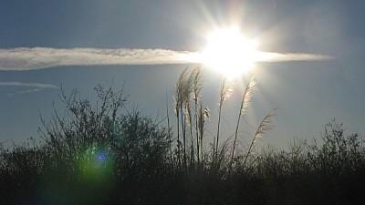 imágenes gratis prod06,cielo,campo,escena rural,sol,atardecer,nube