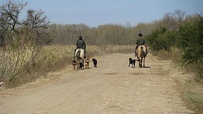 prod06,argentina,campo,escena rural,vista de atrás