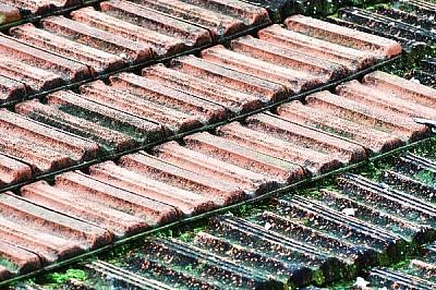 imágenes gratis ,prodjune2010,tejas,techo,tejado,nadie,vista de ar