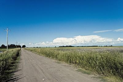 ,aire libre,dia,exterior,campo,escena rural,calle,