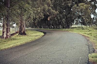 imágenes gratis ,campo,camino,ruta,pedro ramundo,dia,aire libre,ex