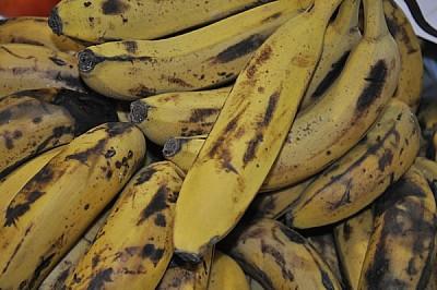fruta, amarilla, muchas, ramo, bananas, platanos,