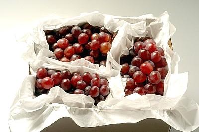uvas, fruta, frescas, saludables, comestibles, fot