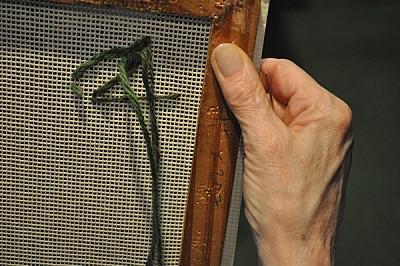 mano, arrugas, mujer, 70 - 79 años, anciana, toca