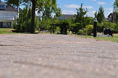sendero, parque, ciudad, casas, barrio, verde, rel