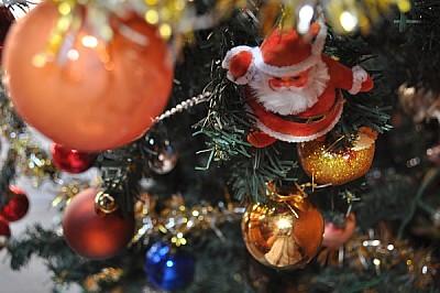 navidad, diseño, arbol, adorno, tradicion, interio