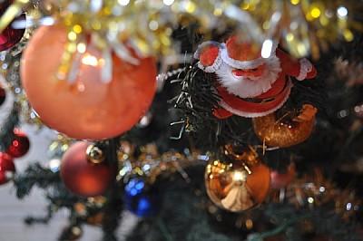 imágenes gratis navidad, diseño, arbol, adorno, tradicion, interio