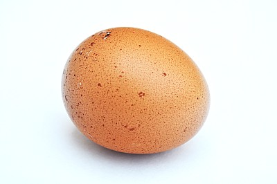 Huevo Colorado