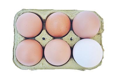 Huevera con 5 Huevos Colorados y Un huevo Blanco