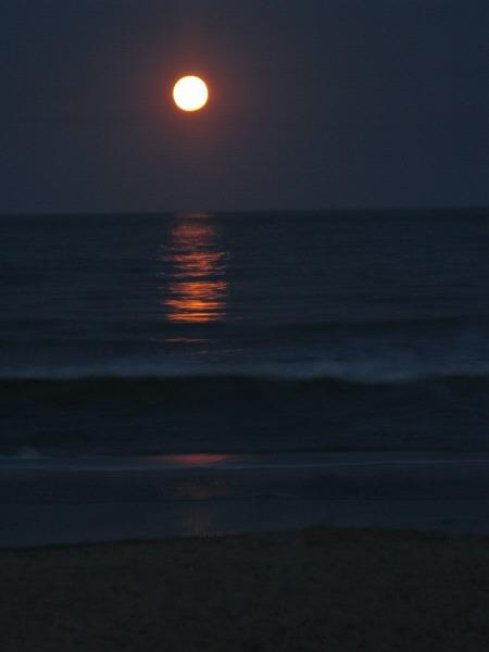 cielo,noche,luna,luna llena,vista de frente,naturaleza,oscuro,fondo,background,mar,reflejo,romantico,romance,agua,costa,luz de luna,oceano,oceanico,oscuridad,paisaje,