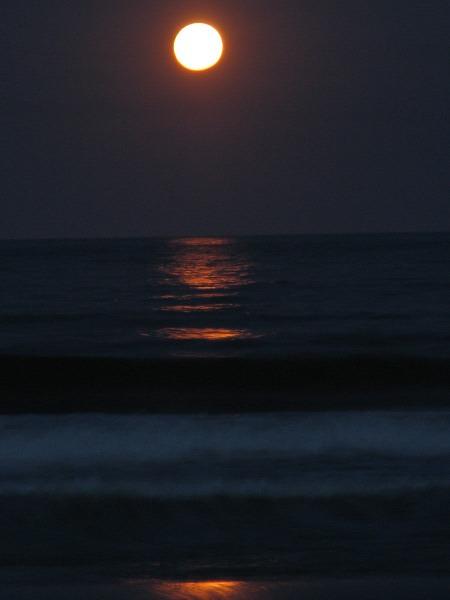 🥇 Imagen de cielo,noche,luna,luna llena,vista de frente