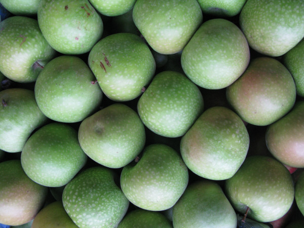 fruta,frutas,manzana,manzanas,vista de frente,verde,verdes,inmaduro,inmaduras,fondo,background,naturaleza,color,cosecha,cultivo,verduleria,venta,