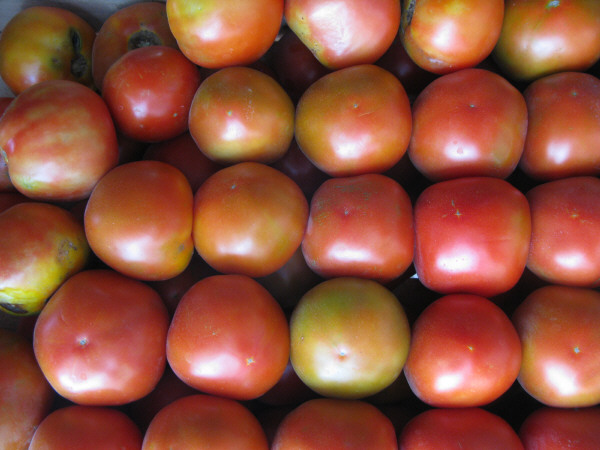 fruta,frutas,tomate,tomates,limones,vista de frente,rojo,rojos,fondo,background,naturaleza,color,cosecha,cultivo,verduleria,venta,
