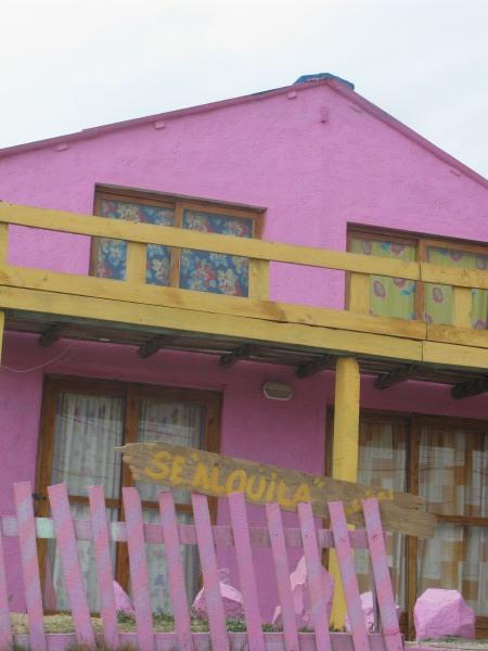 casa,casas,vista de frente,color,colores,dia,aire libre,exterior,cartel,alquiler,alquila,violeta,rojo,colorido,primavera,