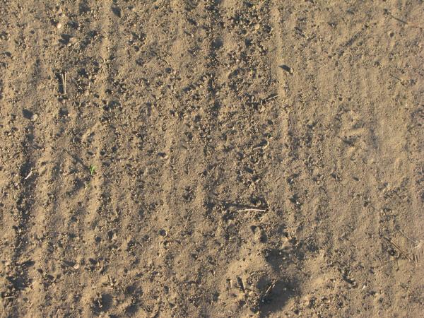 Imagen de fondo vista de frente background tierra piso for Nivelar piso de tierra