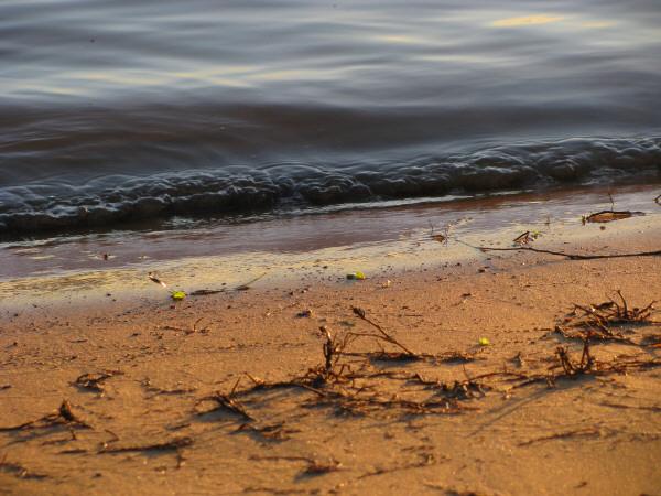 vista de frente,agua,costa,playa,arena,primer plano,fondo,background,naturaleza,