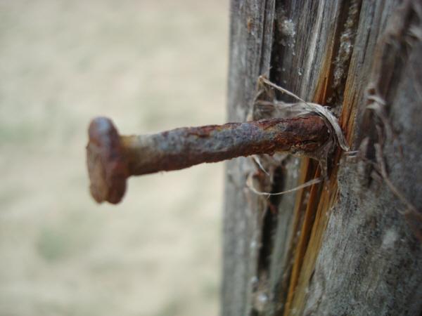 clavo,metal,oxido,oxidado,viejo,vista de frente,antiguo,pasado,nadie,vista de frente,,prod05