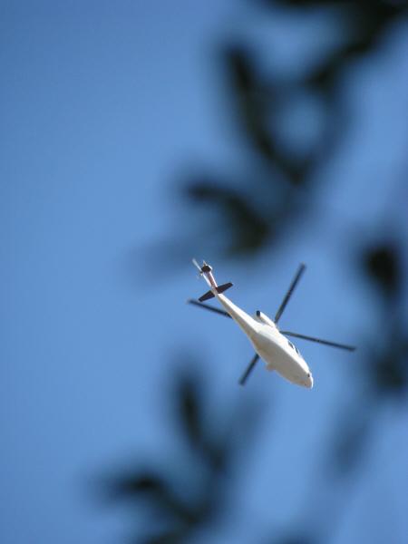 helicoptero,nave,transporte,volar,volando,volador,nadie,vista de abajo,cielo azul,movimiento,,prod05