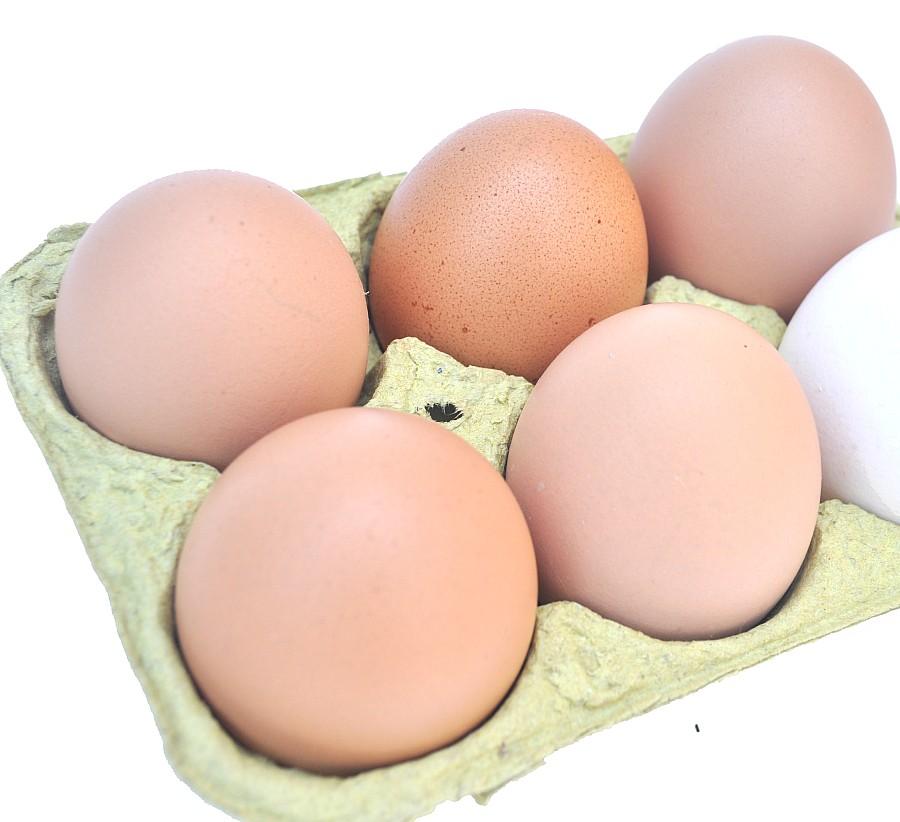 Huevera, Huevo, Huevos, Fondo Blanco, Crudo, Seis Objetos, Diferente, Distinto, Concepto,P052014, Freejpg